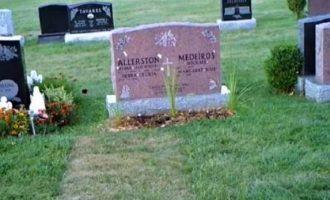 Zhdukeshin lulet nga varri – kamera zbulon veprimin e pabesueshëm