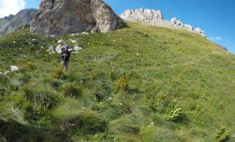 Si ti motivoni fëmijët që të ngjisin malet?