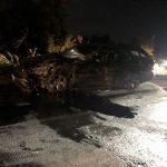 Policia jep detaje për aksidentin ku humbi jetën vajza 6-vjeçe – rritet numri i të lënduarve