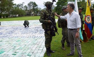 KB: Kolumbia edhe më tutje prodhuesja kryesore e kokainës në botë